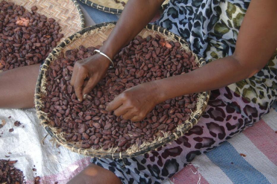 Почему темный шоколад фабрики Chocolaterie Robert не горький