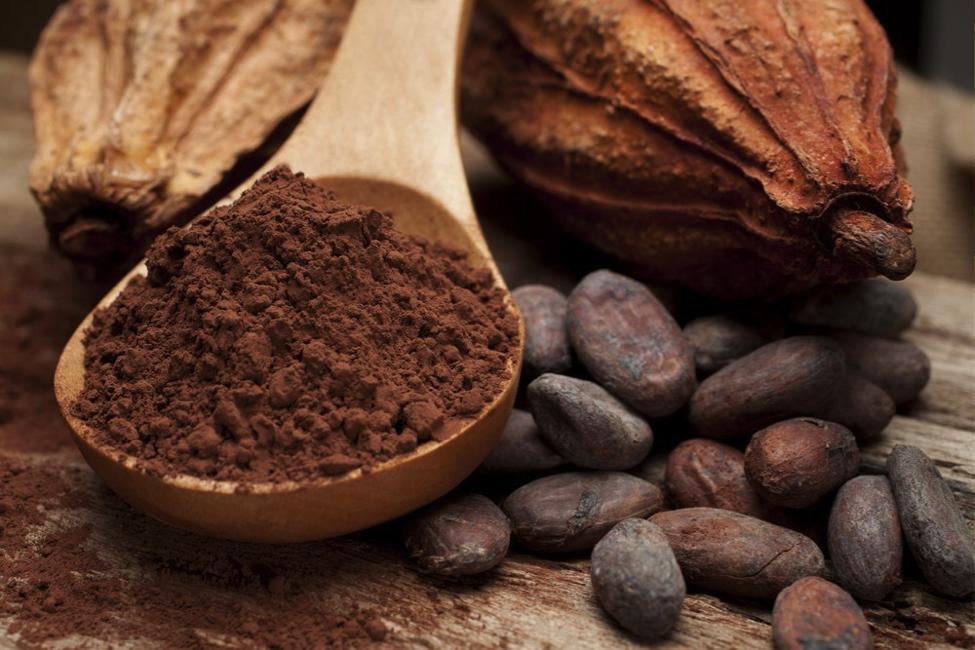 Какао один из самых экологичных продуктов на земле