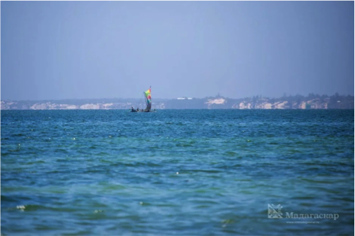 Китовые забавы на Мадагаскаре