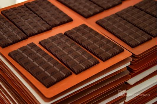 Какао впервые удалось вырастить на Урале