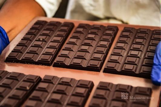 Шоколад – лекарство от всех болезней