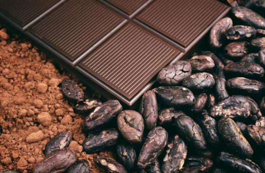 Положительное влияние шоколада на здоровье мозга