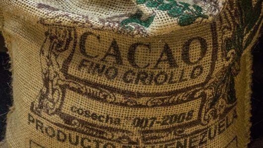 Что такое ферментация какао-бобов и как она влияет на вкусовые качества шоколада?